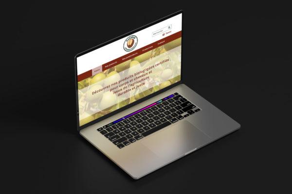 Design page d'accueil Karipur